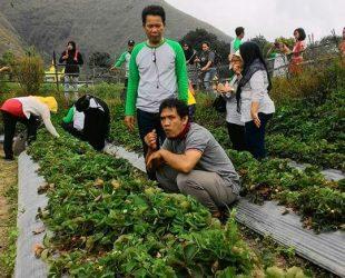 pesona-tour-lombok-26