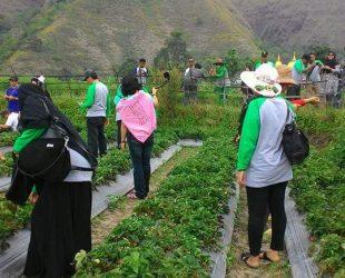 pesona-tour-lombok-29