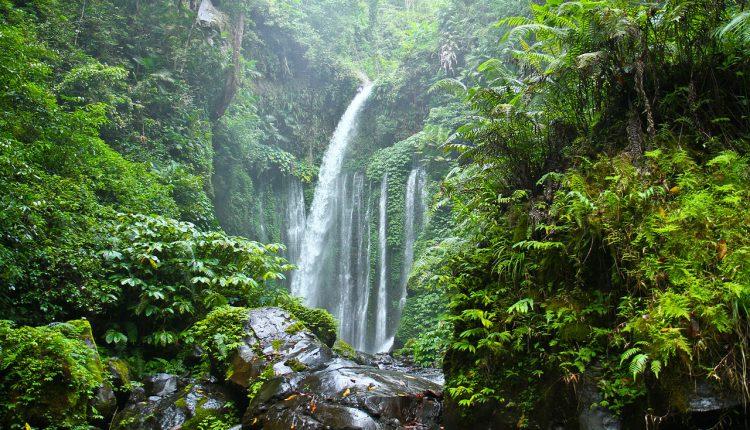 tiu_kelep_waterfall_lombok